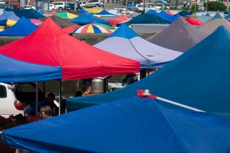 В каждом районе Приморья откроют рынки с