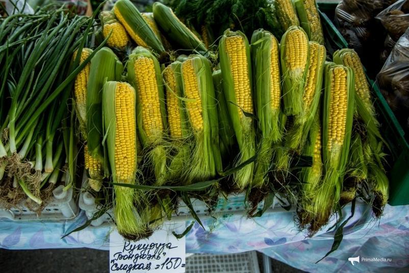 Приморскую кукурузу и пшеницу обложили экспортной пошлиной