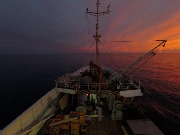 Рыба идет с Дальнего Востока: с чем ключевая отрасль региона подошла ко Дню рыбака