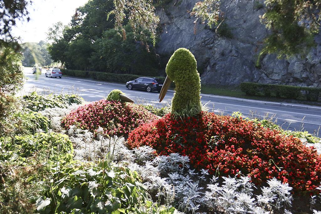 15 октября стартует фотоконкурс «Моя зелёная Находка»