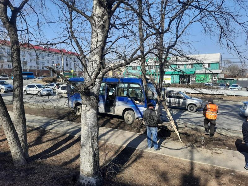 Полиция проводит проверку по факту ДТП с участием пассажирского автобуса в Находке Приморского края