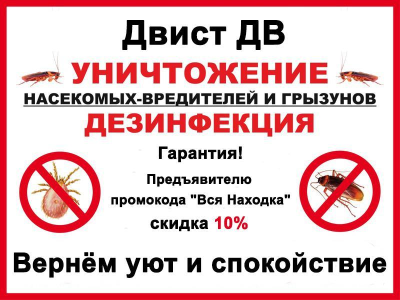 Скажи грызунам и насекомым НЕТ! Профессиональное решение проблем со скидкой 10%